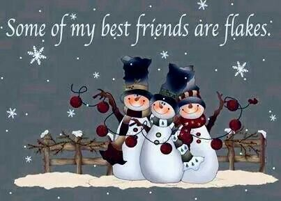 Nice Some Of My Best Friends Are Flakes Funny Quotes Cute Friendship Quote  Winter Friendship Quotes Funny Quotes Humor Snowmen Winter Quotes Images