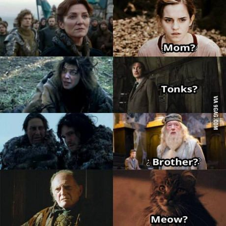 Game Of Thrones And Harry Potter Harry Potter Memes Hilarious Harry Potter Funny Got Memes
