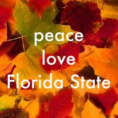 Pin By Ro Huntington On Love My Noles Garnet And Gold For Life