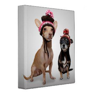 Chihuahua Dogs With Hats Photo Vinyl Binder