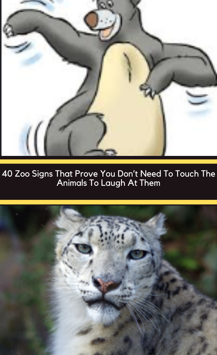 40 Zoo Signs That Prove You Don T Need To Touch The Animals To Laugh At Them Summer Holiday Animals December Holidays