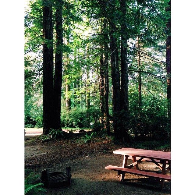 Redwoods Rv Resort Resort Redwood Rv Parks