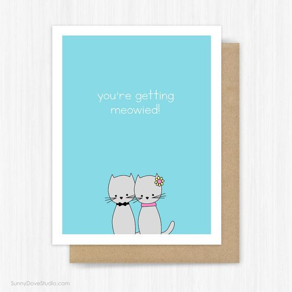 Wedding Congratulations Card Funny Engagement Cat Getting