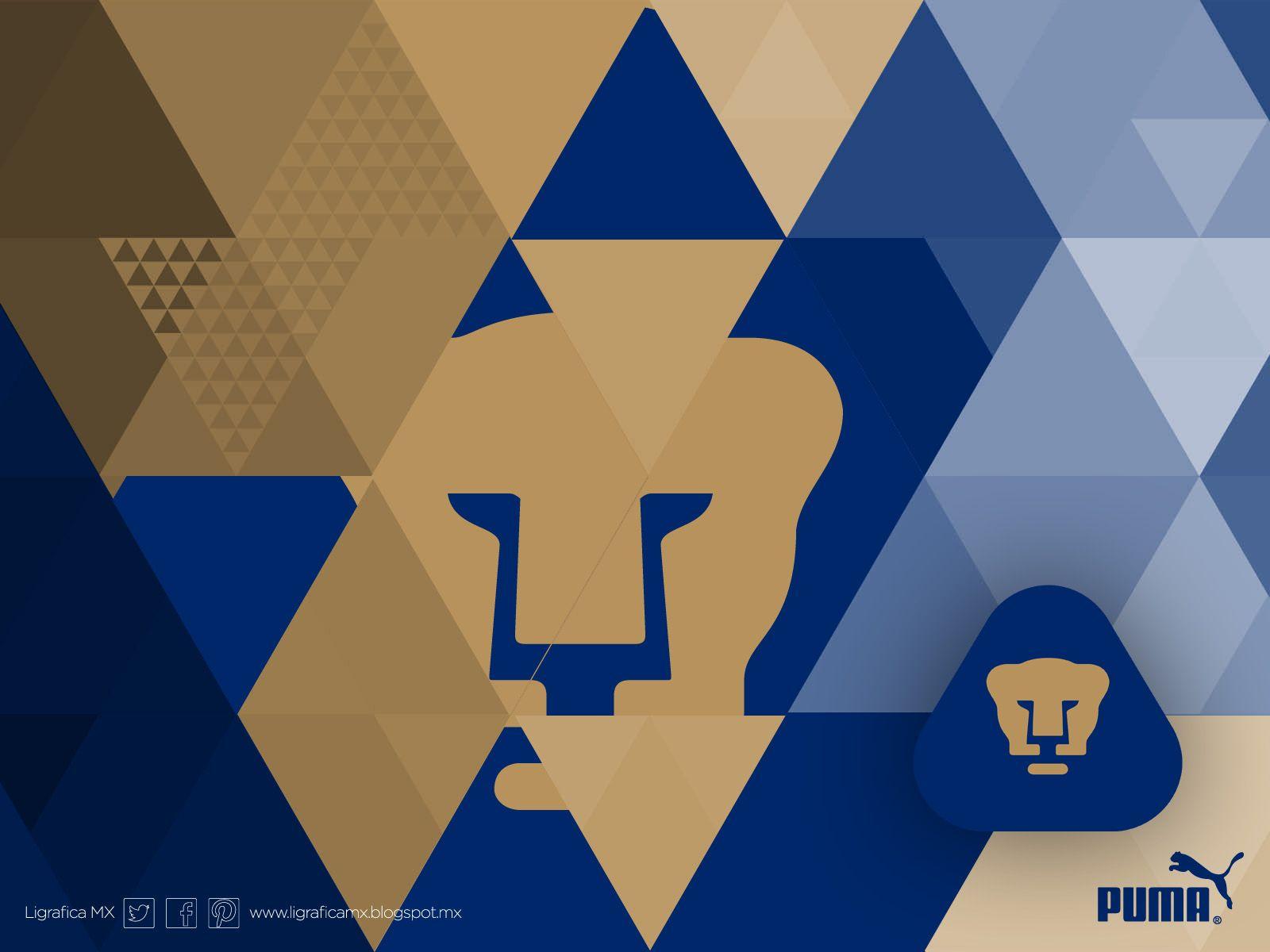 pumas unam • • ligraficamx 021213ctg(2) | pumas wallpaper