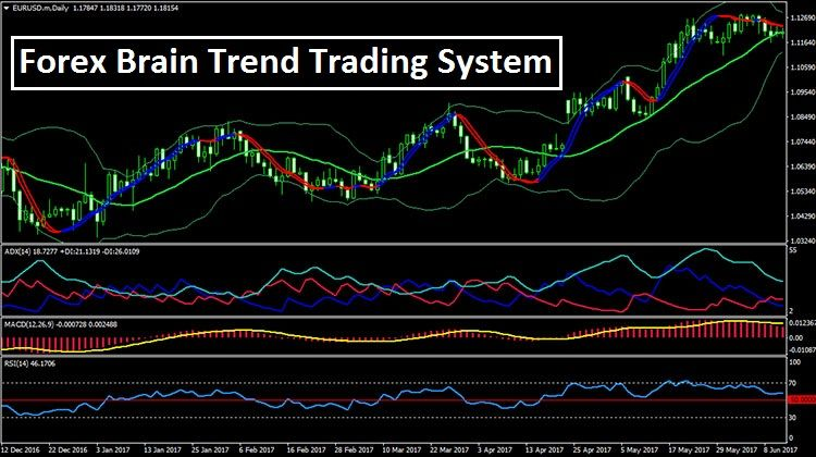 Forex Brain Trend Trading System Forex Trading Learning How To