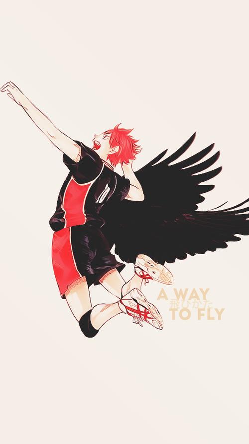 Hinata Fly Fondos De Pantalla Haikyuu Y Anime