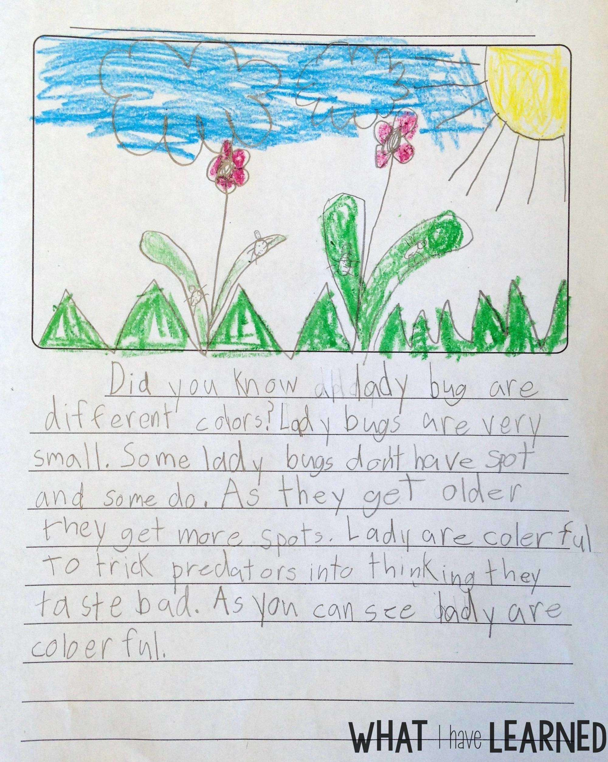 Informational writing for kids outline