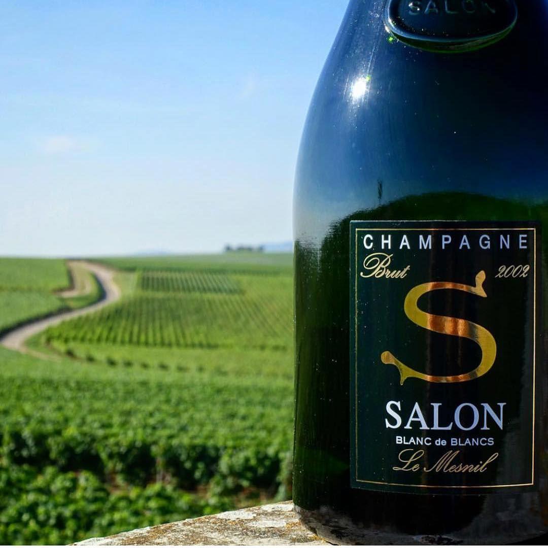 Champagne Salon ~ Blanc de Blancs 2002 | WinE | Pinterest | Wine ...