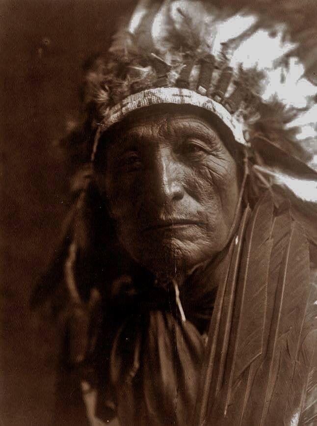 Hehaka Wanbli ( Eagle Elke ) amérindien Oglala