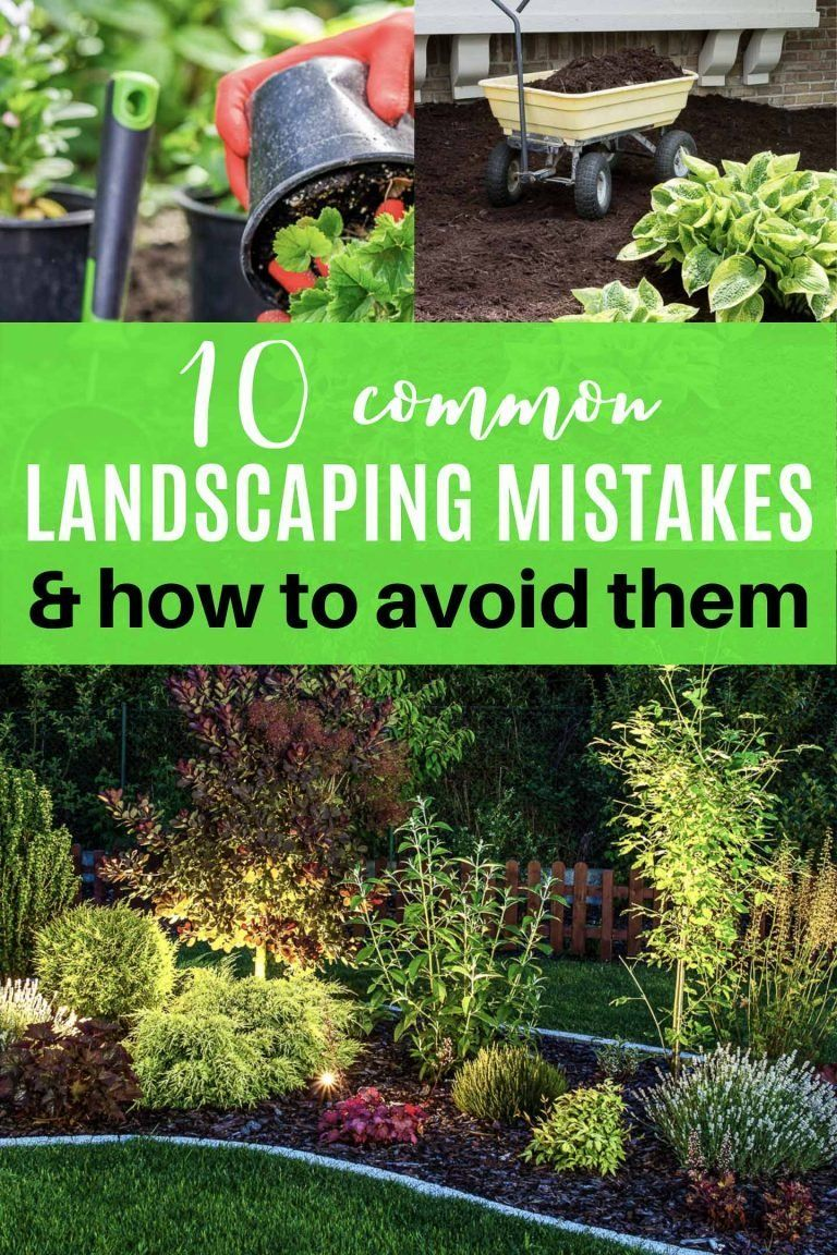 Love these gardening tips for landscaping mistakes to avoid. They will definitely help my backyard garden landscaping to turn out better this summer. #fromhousetohome #gardeningtips #gardening #gardenlandscaping  #gardeningforbeginners
