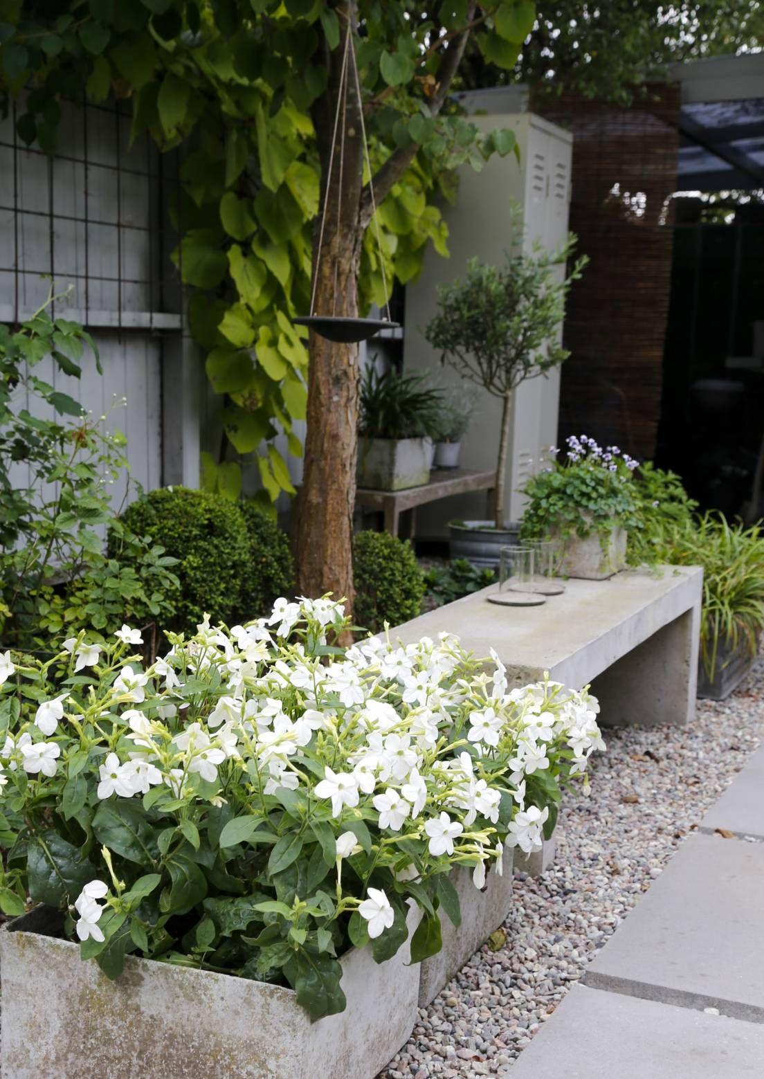 Istahda penkille! 12 luonteikasta puutarhapenkkiä | Meillä kotona