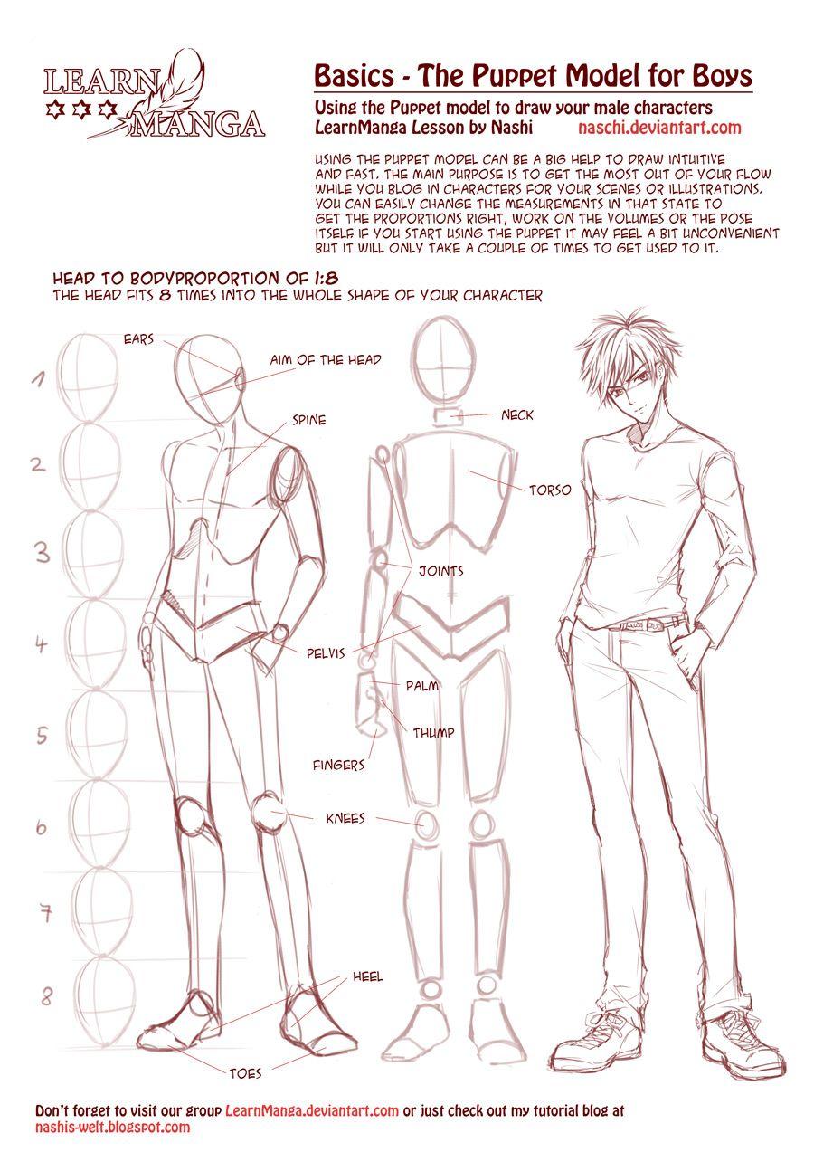Learn Manga Basics: The Male Puppet By Naschiiantart On @deviantart