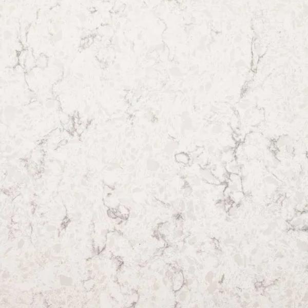 Stonemark 4 In X 4 In Quartz Countertop Sample In Mara Blanca
