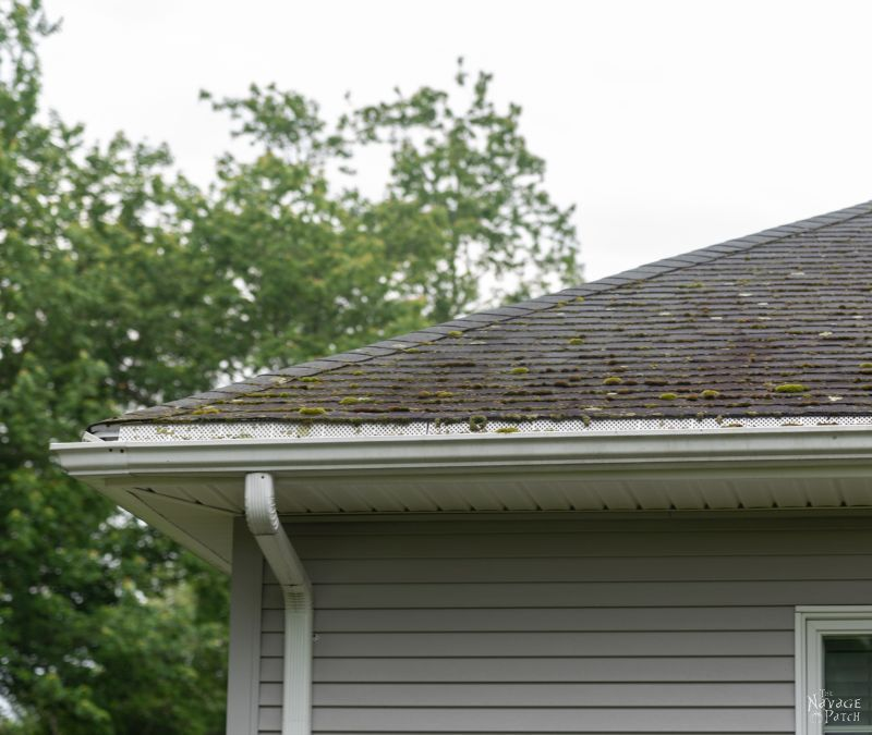 Roof Cleaning Roof Moss Removal In 2020 Roof Cleaning Moss Removal Roof Maintenance
