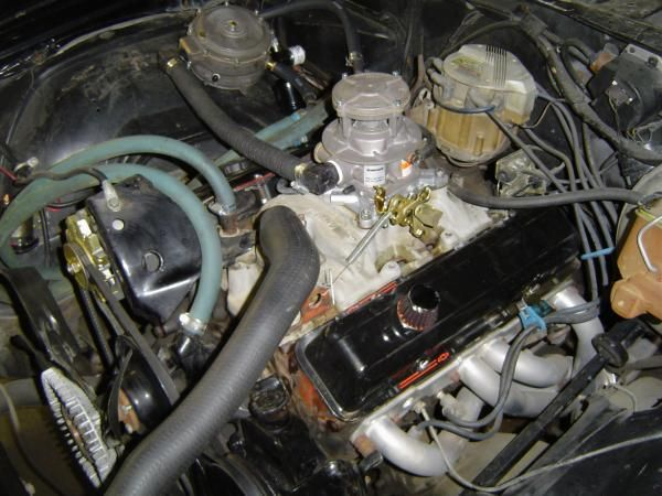 IMPCO 425 Propane Conversion Kit on Chevy 350 Engine