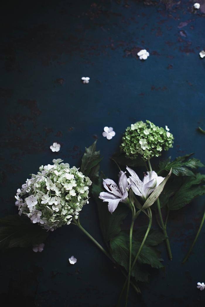 When Life Is Fragile - CHRISTINA GREVE