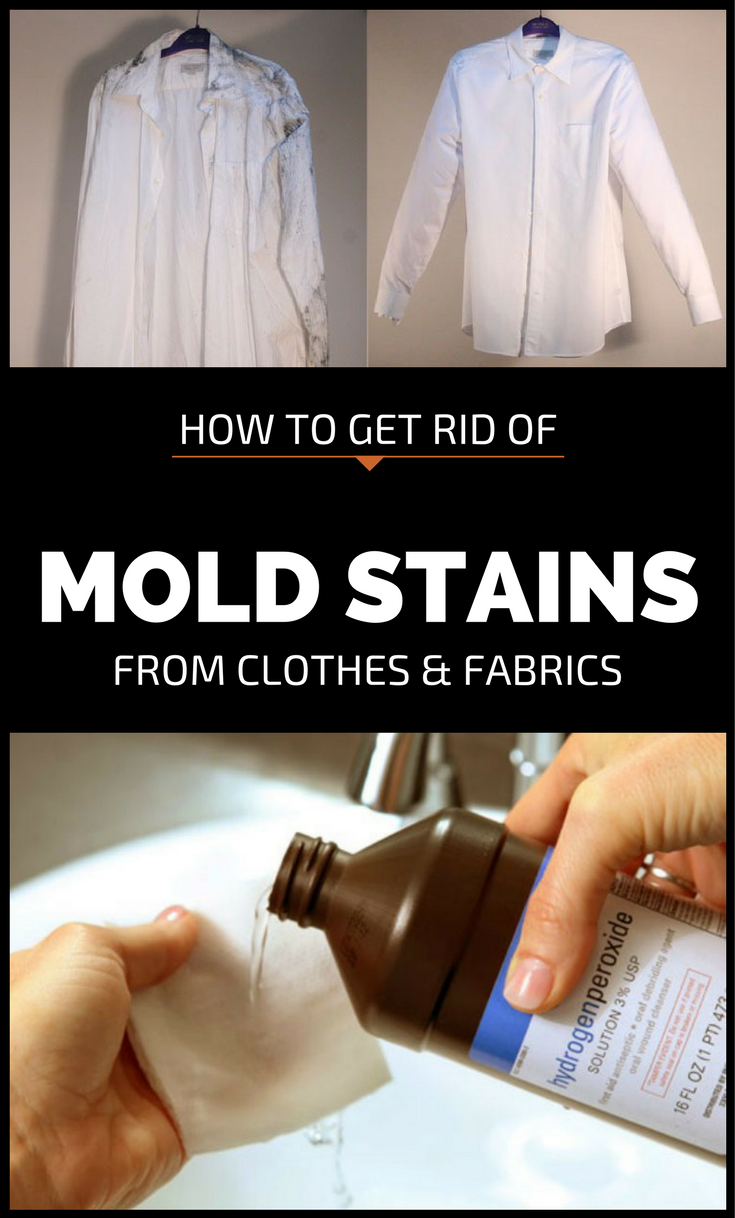 Recent Mold Stains Are Light Gray And Old Dark Sometimes Black Get Rid Of On White Cotton Fabrics