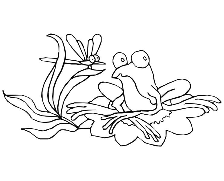 15++ Frog on lily pad coloring page download HD