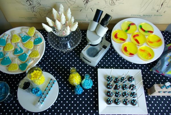 Boys Mad Science Birthday Party Dessert Table Food Ideas