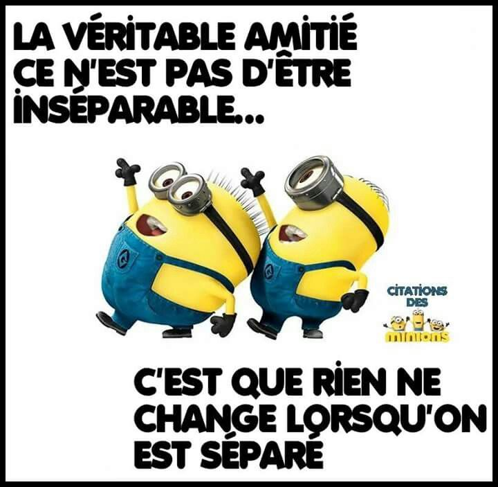 les 25 meilleures id es de la cat gorie minions fond d cran sur pinterest fond ecran minion. Black Bedroom Furniture Sets. Home Design Ideas