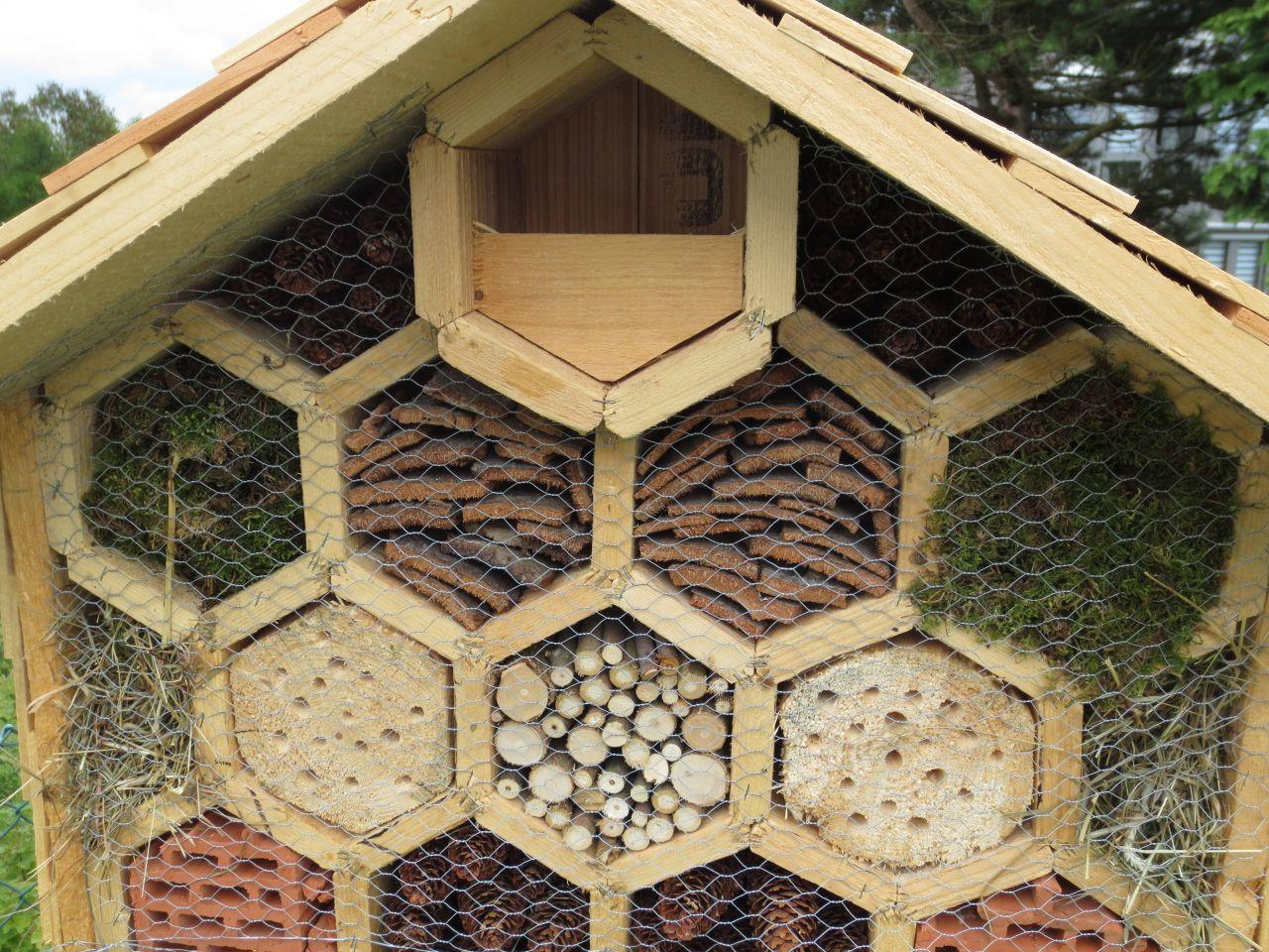 Vier Sterne Insektenhotel   Bauanleitung zum Selberbauen   200 20 do ...