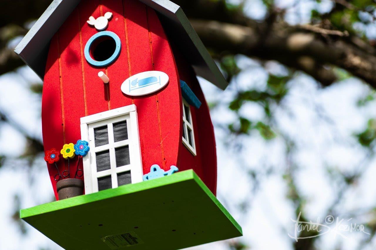 Birdhouse Lidl Vogelhaus In 2020 Vogelhaus Ideen