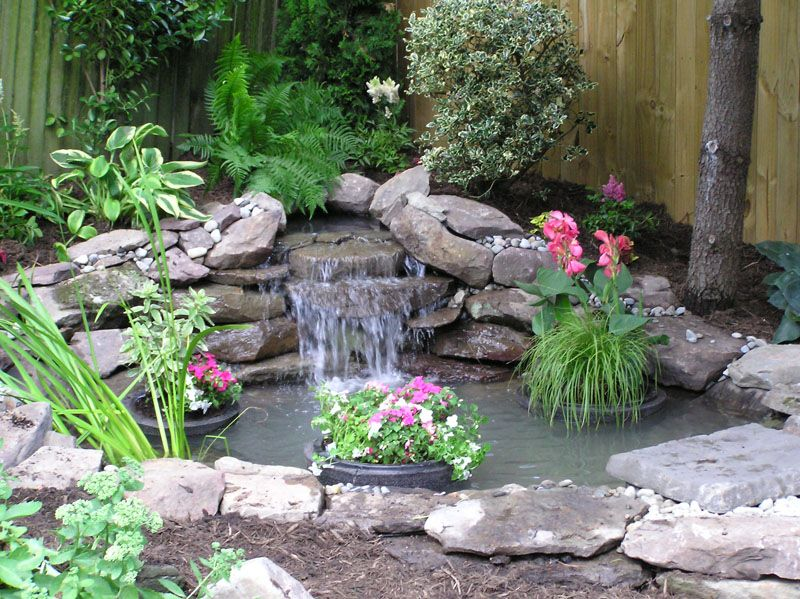 Small yard ponds this pond fits perfectly into the for Garden pond ideas for small gardens