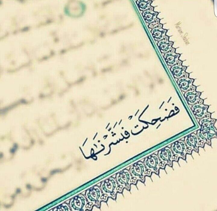 فضحكت فبشرناها Quran Quotes Love Quran Book Quran Quotes