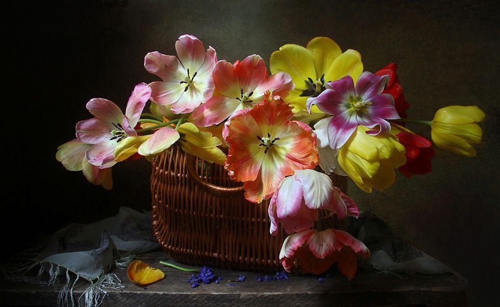 May Blossom - Filatova Marina - LensArt.ru
