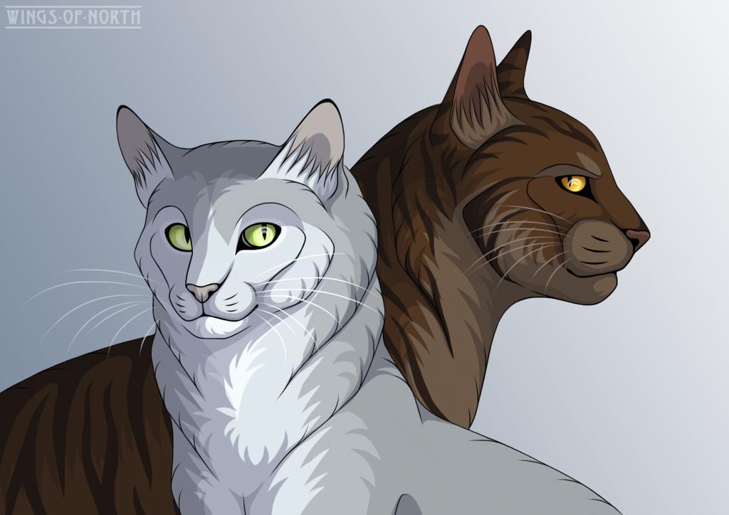 Картинки котов воителей шмель