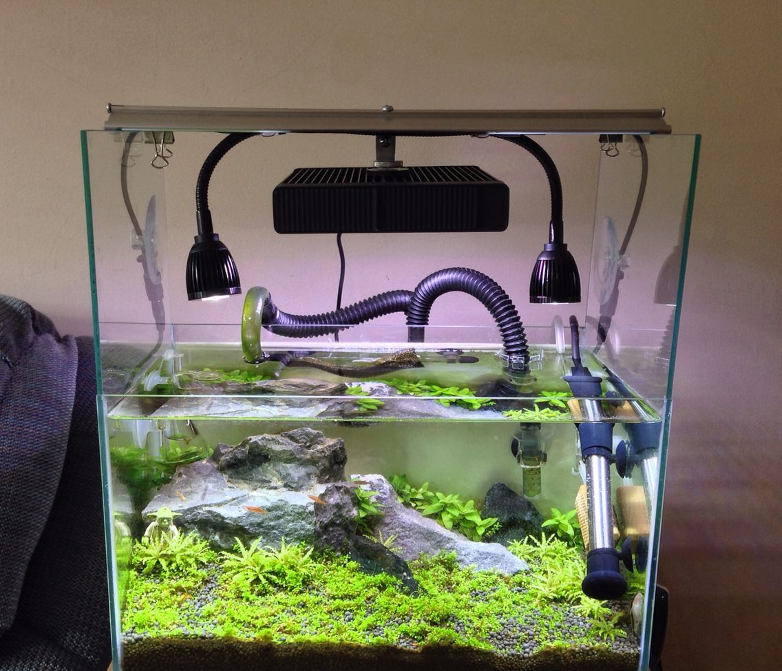 Diy Light Mount Using Fluval Led Panel Plus 2x Deep Blue