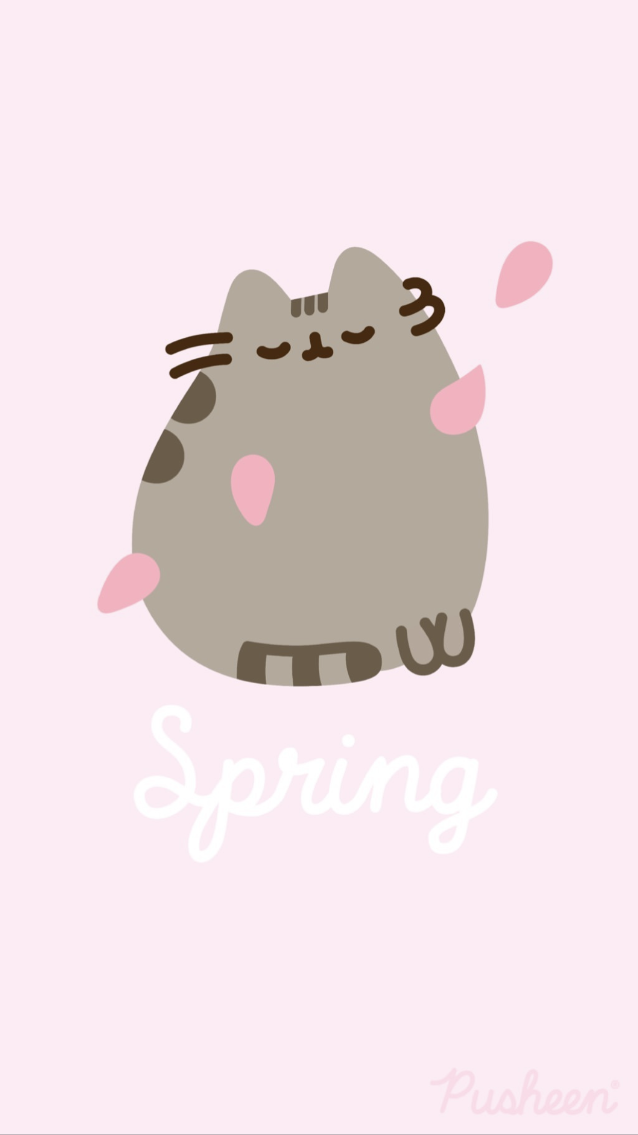 Pusheen The Cat Iphone Wallpaper Background Spring Pusheen Cute Pusheen Cat Cute Cartoon Wallpapers