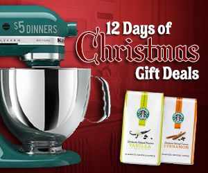 50% off Martha Stewart Cast Iron cookware, plus 15% Off Coupon Code.   Plus $9.99 Electric Griddle from Kmart, and more!  DAY ONE: 12 Days of Christmas Gift Deals on 5DollarDinners.com