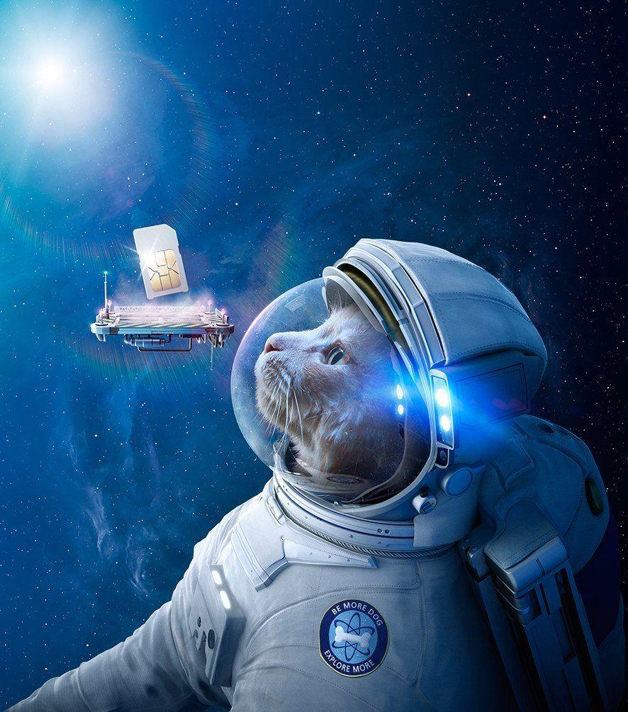 Смешные картинки космонавта