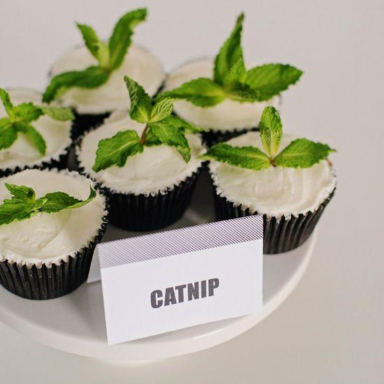 Image result for catnip cake