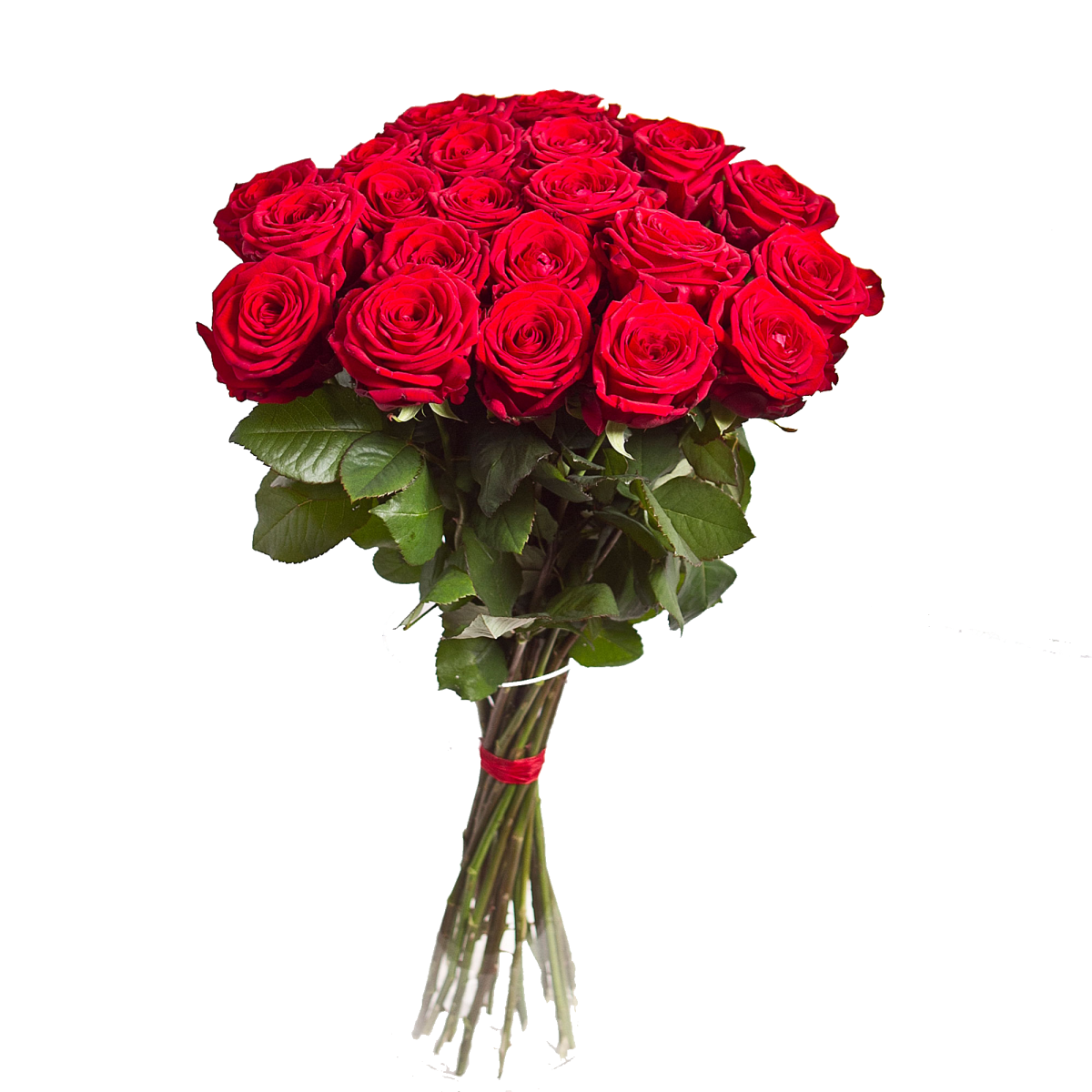 Bouquet Of Flowers Png Image Flowers Bouquet Red Rose Bouquet Red Rose Pictures