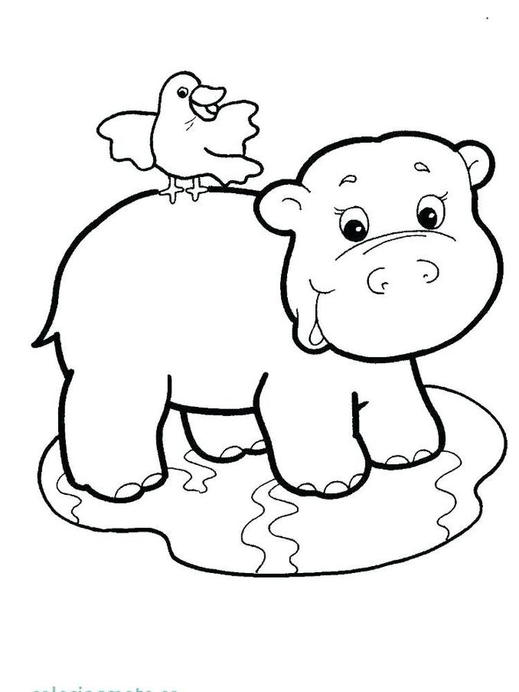 Cute Hippo Coloring Pages Hippo Is A Large Semi Aquatic Mammals