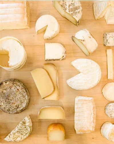 Cheese Cheese Tasting I Like Cheese Cheesy