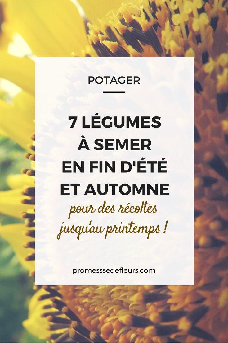 Quoi Planter En Octobre 7 légumes à semer en fin d'été au potager | potager, jardins