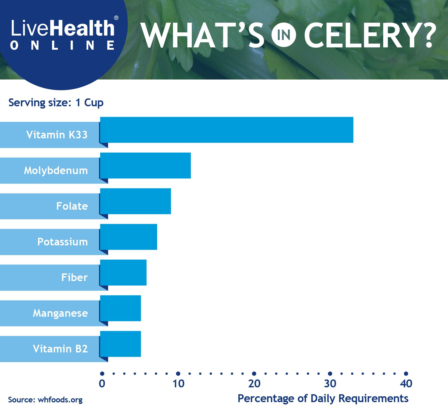 The Nutritional Value Of Celery Nutrition Nutritional Value Health Tips