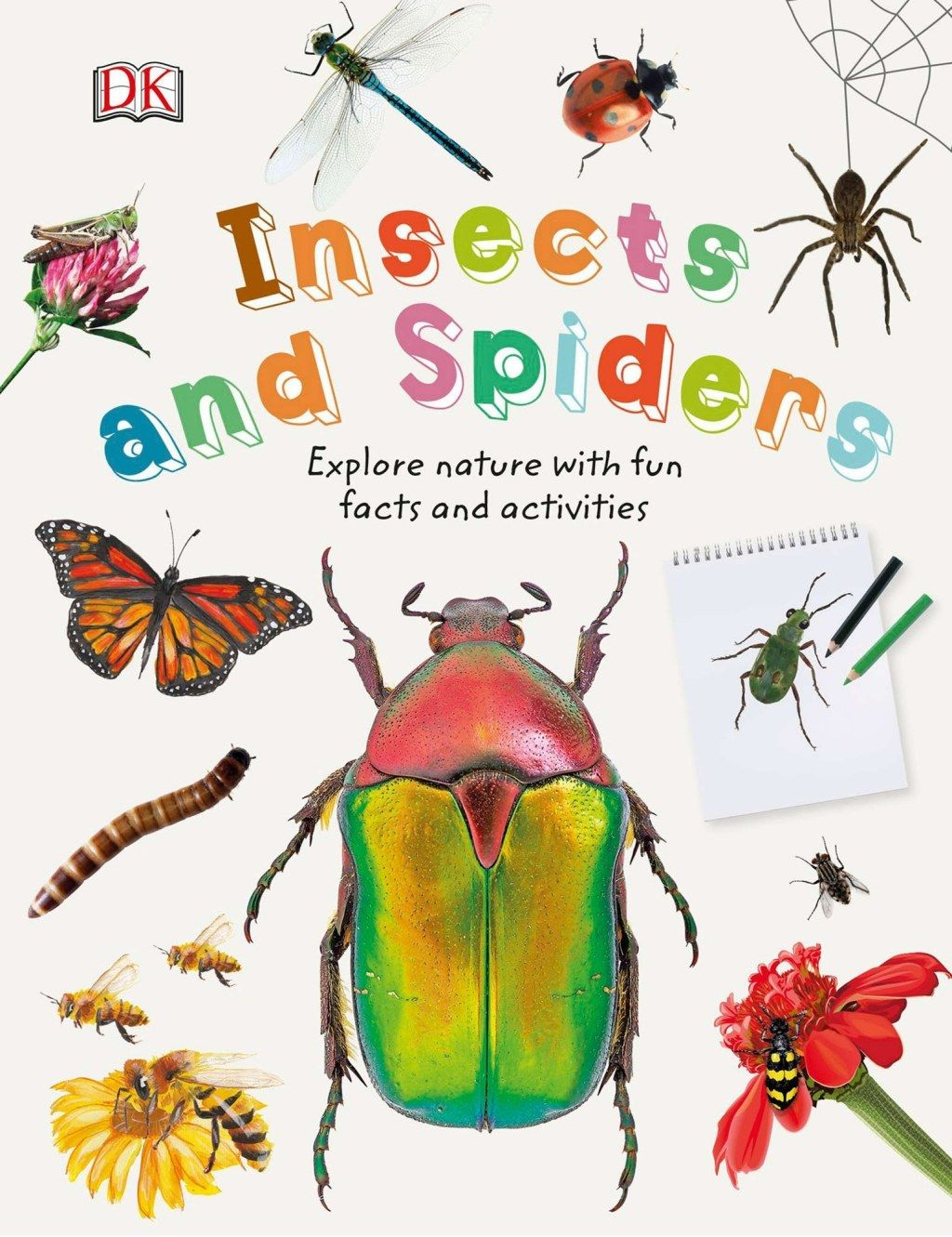 Insects And Spiders Ebook