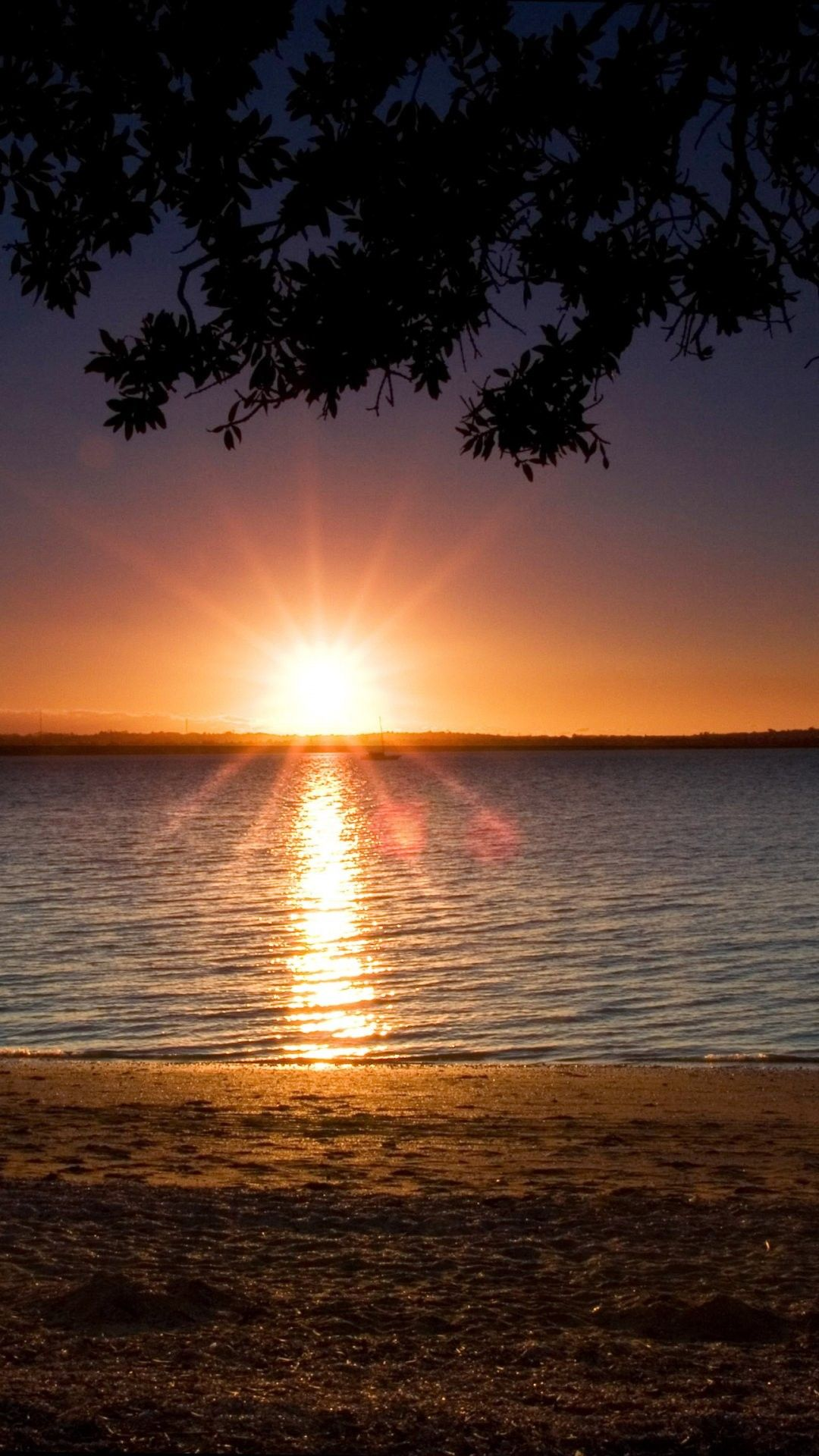 Beach Sunset iPhone 6 Plus Wallpaper 28818 Beach iPhone
