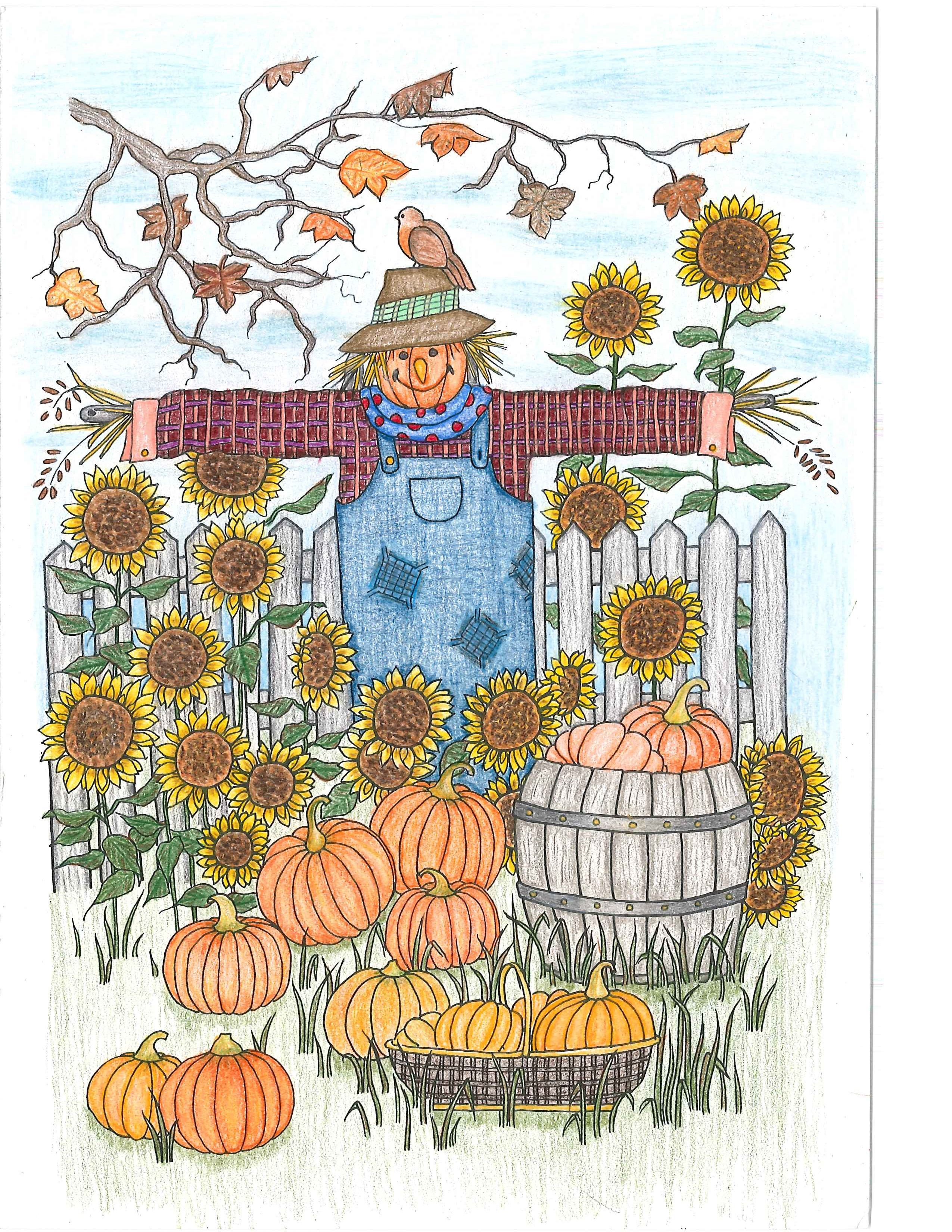 Colored With Prismacolor Premier Pencils From Whimsical Garden Coloring Book Dover Publishing