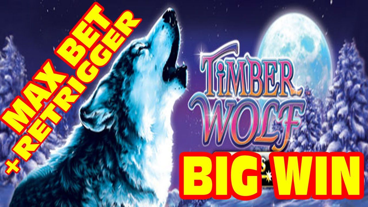 Timber wolf slot machine big win pro gambling forces want convention center to fail casino