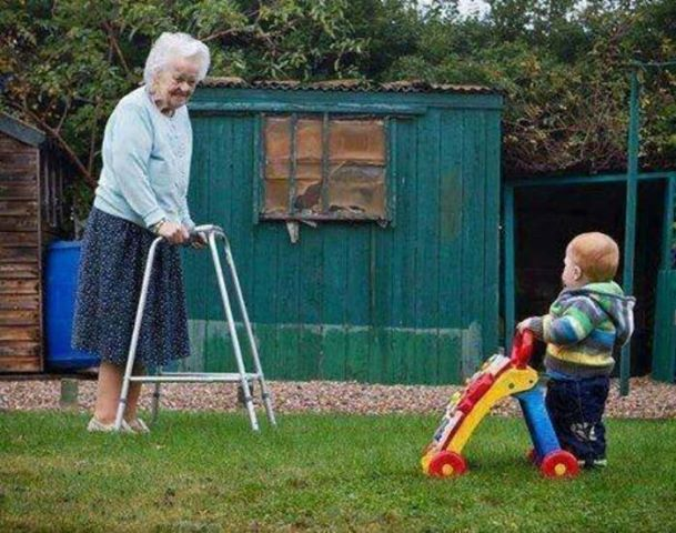 Closed Chain Exercises For Late Stage Alzheimer S Disease Circle Of Life Funny P Funny Pictures