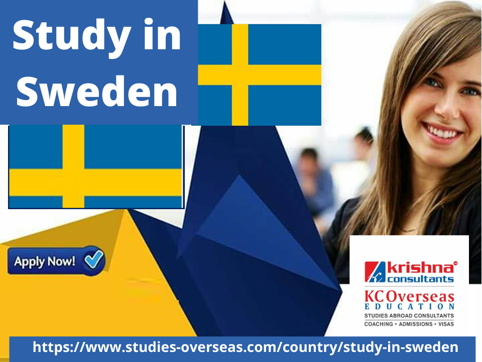 Pin On Study In Sweden