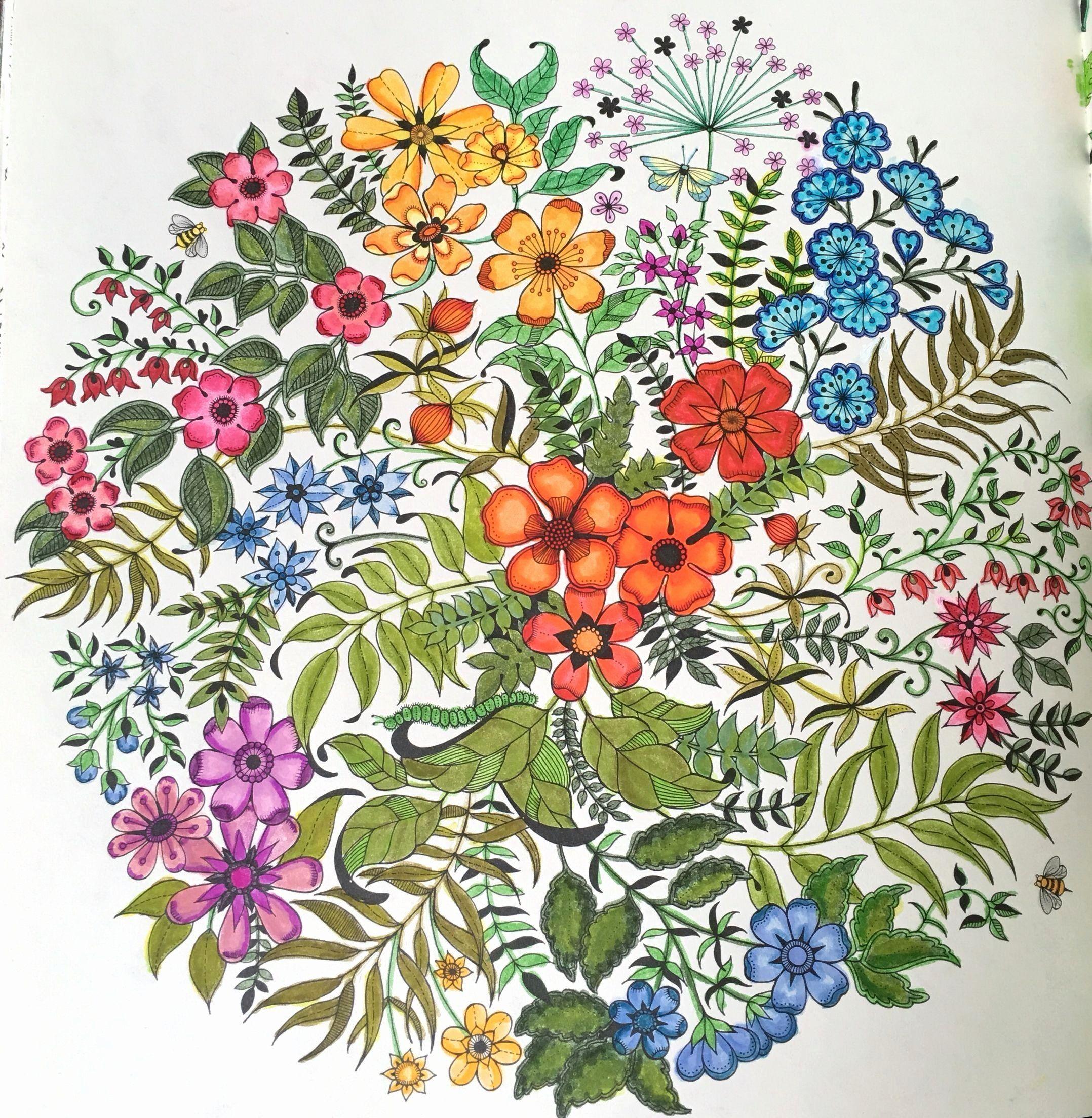 Pin On Secret Garden Colouring