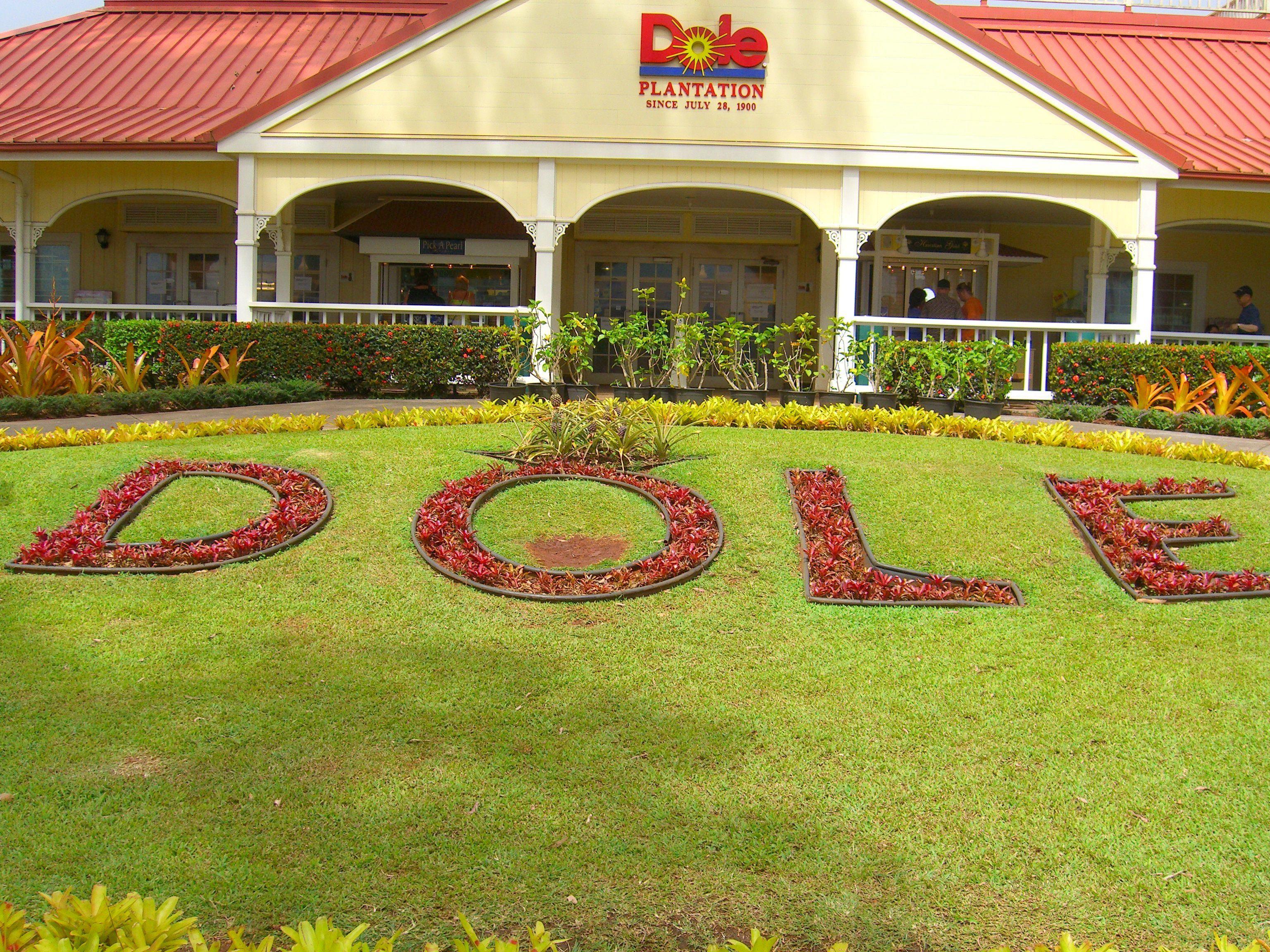 Dole Plantation, Oahu Hawaii sweepstakes hawaii