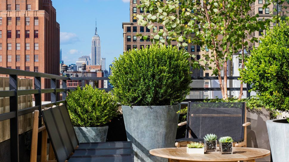 Book Your Luxury New York Hotel With Kiwi Collection And Enjoy Our Range Of 5 Star Boutique Hotels While Receiving Vip Amenities Upgrades