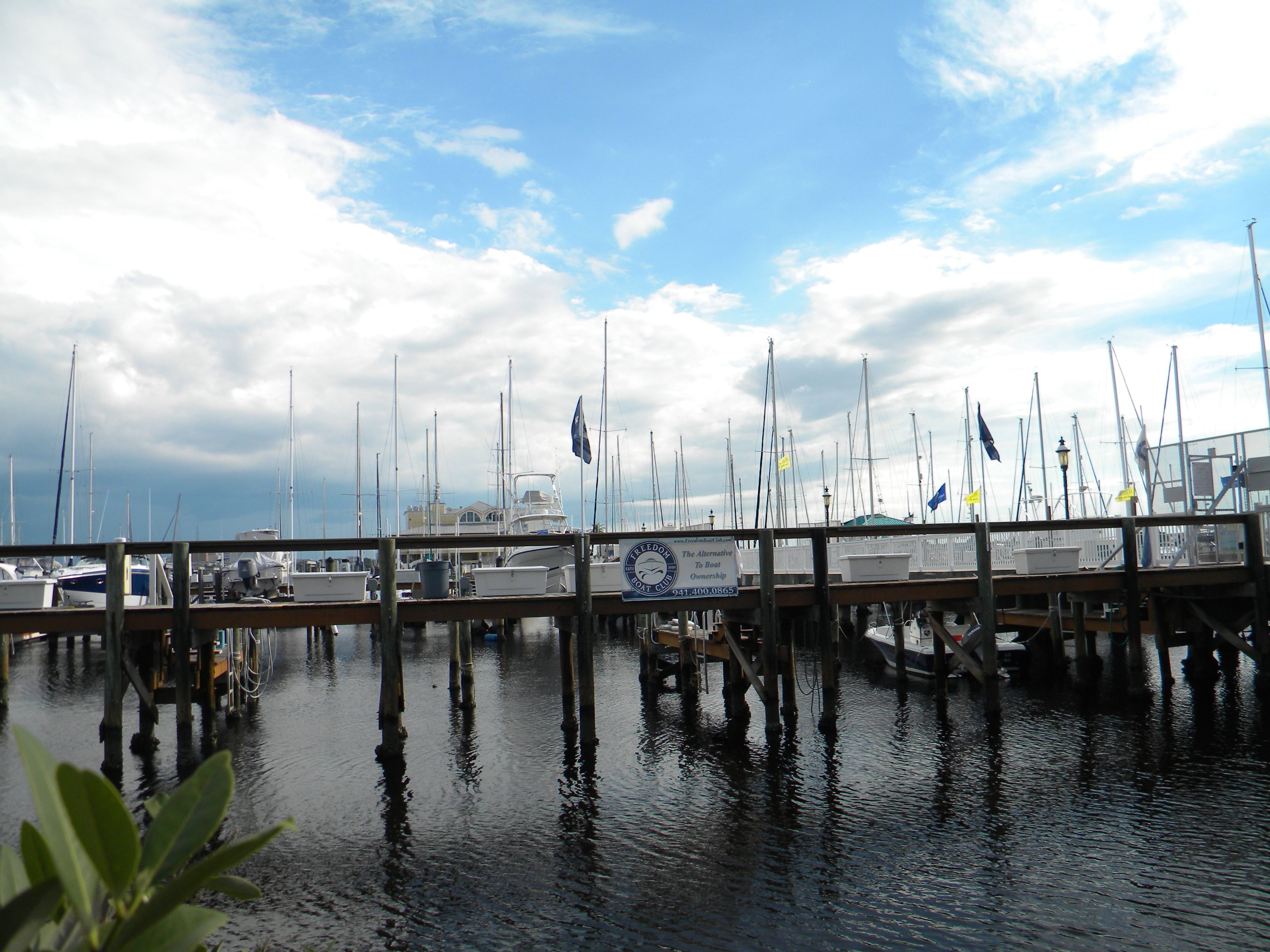 Freedom sailing. Florida's favorite live-aboard marina. Regatta Pointe Marina, Palmetto FL